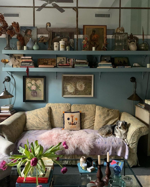 Σκύλος πάνω σε καναπέ στο σπίτι της Ελένα Κρίστενσεν