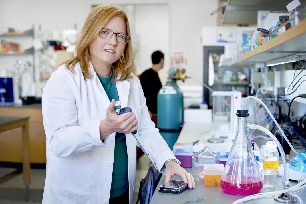 Καθηγήτρια Kristi ANSETH – Επιστήμες Βιολογίας