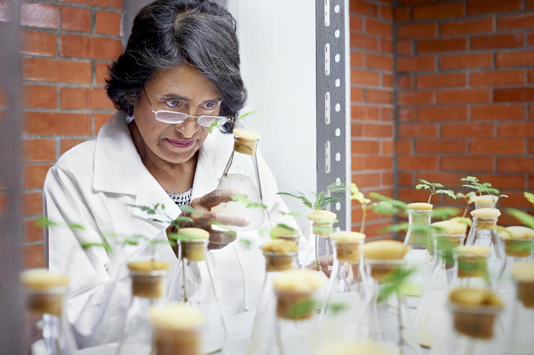Καθηγήτρια Esperanza MARTÍNEZ-ROMERO – Επιστήμες Οικολογίας και Περιβάλλοντος