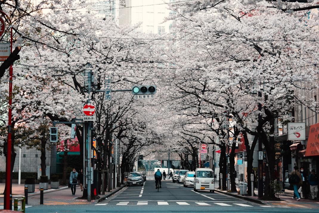 Τόκιο