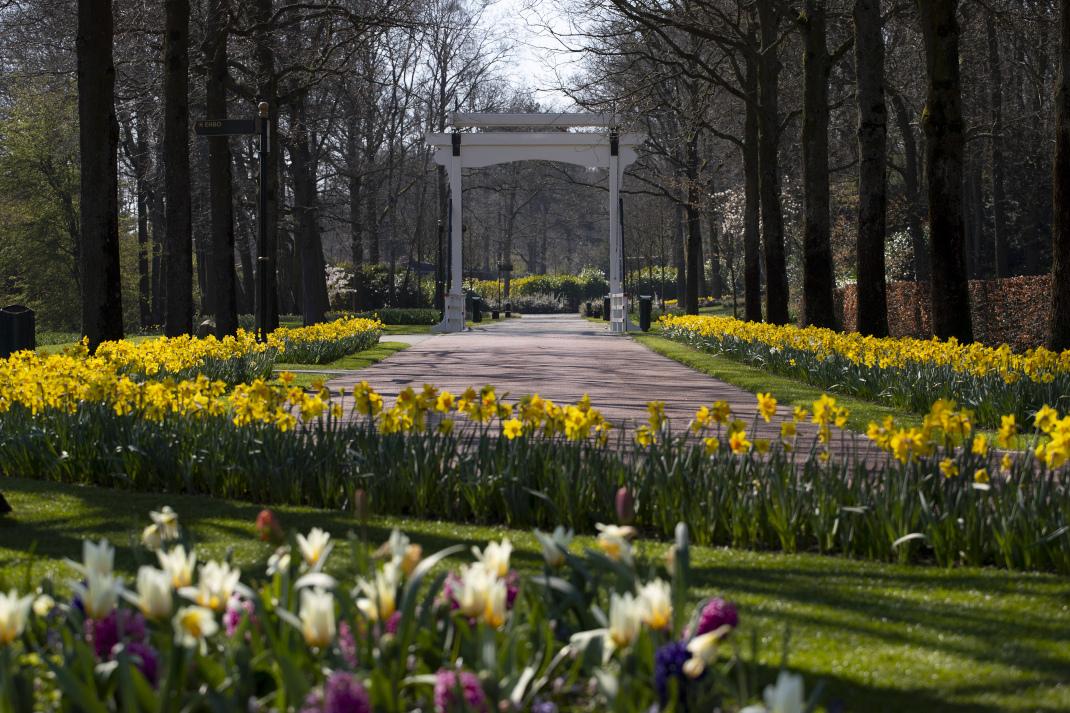 O πιο διάσημος κήπος της Ολλανδίας δεν έχει επισκέπτες